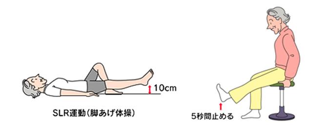 変形 性 膝 関節 症 リハビリ